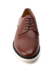 monte-brown-v2